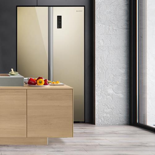 志高(CHIGO)558升 家用對開門大冰箱 節能靜音 高效保鮮冷藏冷凍電冰箱 558