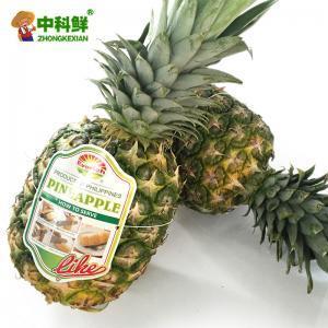 【中科鲜】凤梨 台湾进口凤梨10斤装