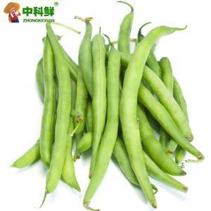 【中科鮮】豆角 四季豆500g  (僅限北京天津發貨,蔬菜總量8份起訂)