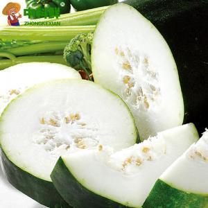 【中科鲜】 农家冬瓜切块1000g   (仅限北京天津发货,蔬菜总量8份起订)